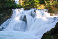 Photo of Beaver Creek Falls