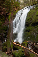 Photo of Coal Creek Falls