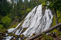 Photo of Diamond Creek Falls