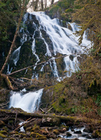 Photo of Fishhawk Falls