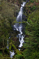Photo of Jack Falls