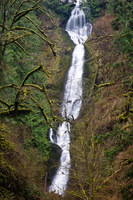 Photo of Munson Creek Falls