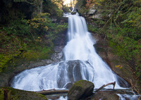 Photo of Racehorse Falls