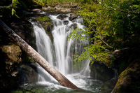 Photo of Smith Falls