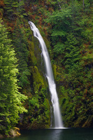 Photo of Terwilliger Falls