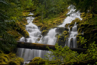 Photo of Upper Proxy Falls