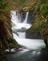 Photo of Willaby Creek Falls