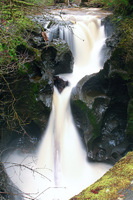 Photo of Youngs Creek Falls
