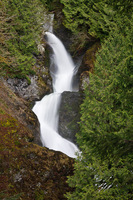 Photo of Calligan Creek Falls