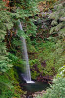 Photo of Miller Creek Falls