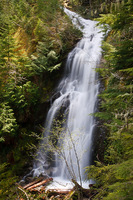 Photo of Bishop Falls