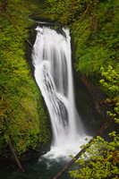 Photo of Butte Creek Falls
