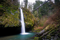 Photo of Drift Creek Falls