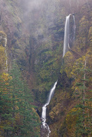 Photo of Shady Creek Falls